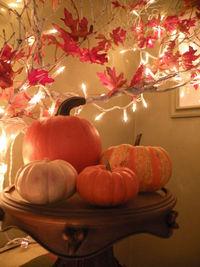 Fall dresser1