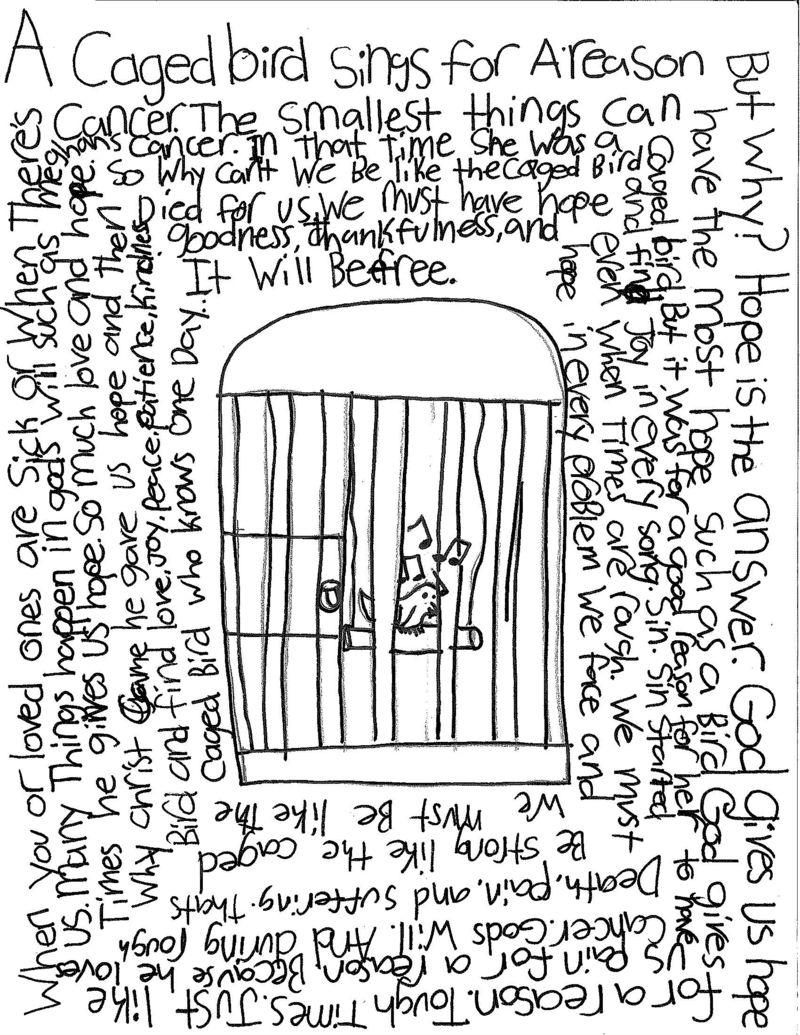 Aidan - A Caged Bird (original)