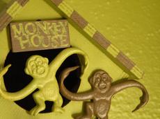 Monkey_house_3_2